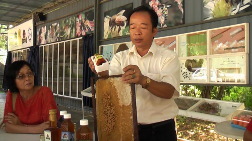 Man worked with bees for 35 years