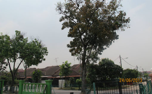 Haze condition in Tama Suria, Johor Bahru (12:30pm). Photo by Lee-Jean.