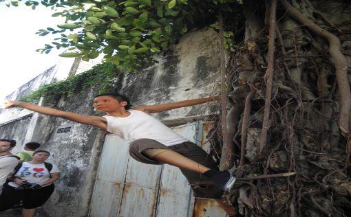 Lumut Lane: climbing tree