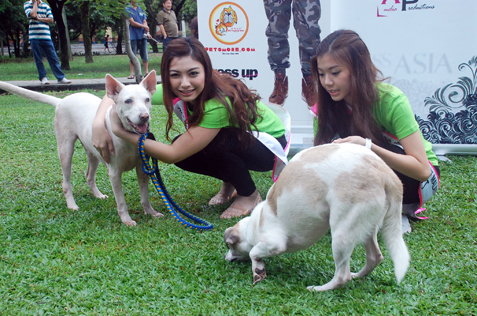 ATV Miss Asia Pageant Malaysia 2013 finalists spend time with dogs
