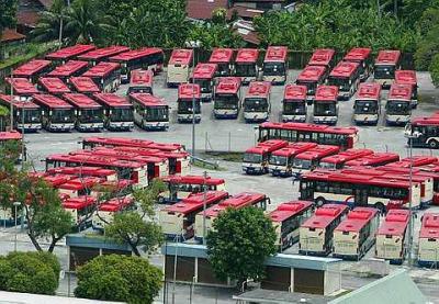 Rapid Buses