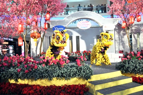 A pair of lions dancing to spread good luck, good fortune, good health and prosperity