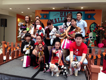 10 finalists of Doggies Halloween Rock photo contest with their owners in SStwo mall