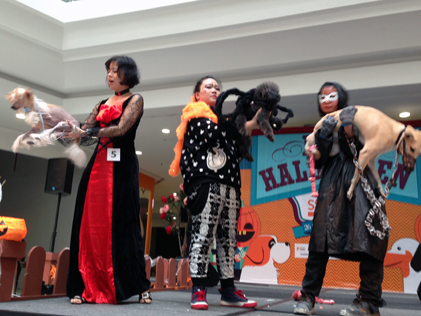 A Halloween dog fashion show at SStwo Mall, PJ