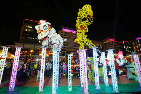 An acrobatic duo lion dance performance enthralls guests with their grace and agility.
