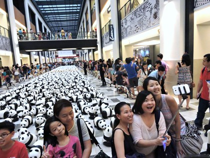 Many people are also taking selfies with the pandas