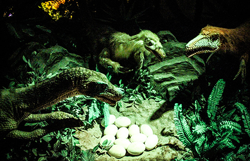 Discover the Mesozoic Era at Dinoscovery by Dinosaurs Live!