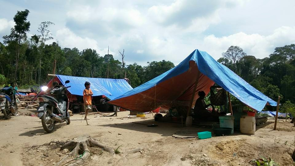 The temporary homes sheltering the Orang Asli (Images courtesy of DAP MERSING Facebook Page)