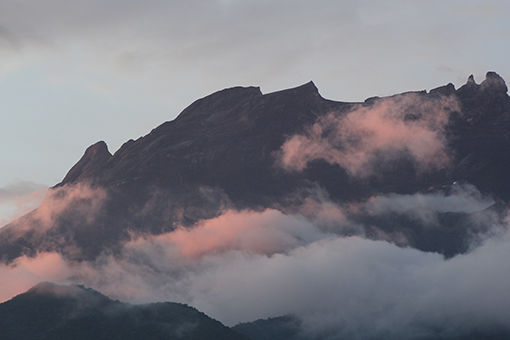 LETTER:The amazing Mt Kinabalu 2 weeks before the quake (Photos)