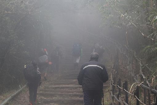 Trekking in the mist. (Images courtesy of Antony D'Cruz)