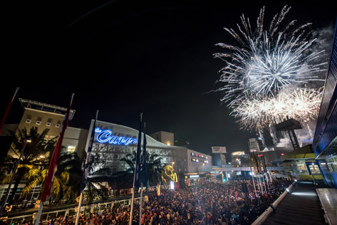 A spectacular fireworks display lit up the night sky to celebrate the start of a brand new year