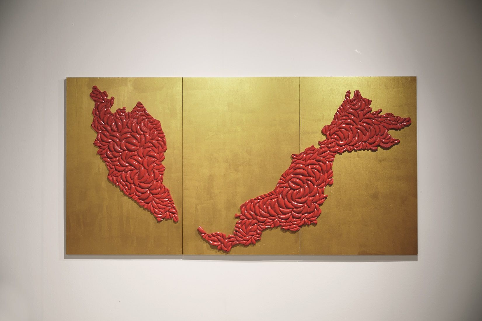 Malaysia Map, Lee Mok Yee, Chinese Praying Wood, Wood, House Paint, 324x144, 2013