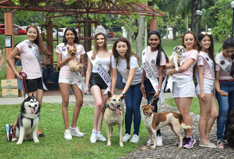 Amelia Liew (centre) with her beauties getting ready for the photoshoot with the furry friends