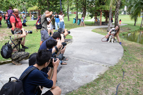 Photographers aiming their cameras and taking a beauty shot of a MCW finalist with dog