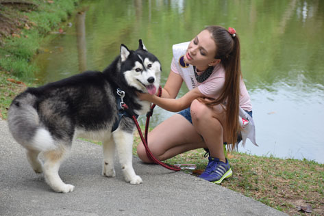 Miss Cosmopolitan World Russia 2016 - Veronika Markova with a Siberian Husky